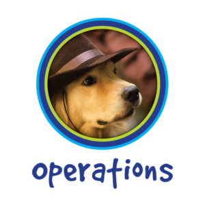 Operations-P